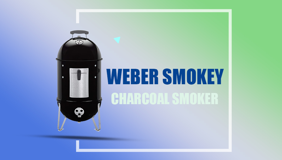 Weber Smokey charcoal smoker