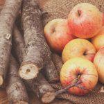 Apple Wood For Smoking Brisket